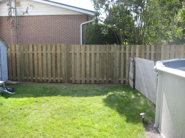 Fences by D.D.Oasis 2