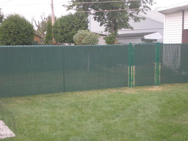 Fences by D.D.Oasis 4