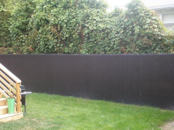 Fences by D.D.Oasis 7